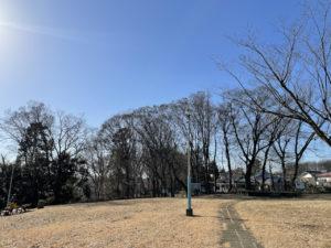 小山台遺跡公園で西武線を眺める【電車の見える公園】